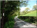 SJ2524 : The lane up the hill by Christine Johnstone