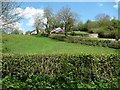 SJ2524 : Hillside and farmhouse by Christine Johnstone