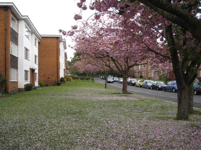 Garrard Gardens, Sutton Coldfield