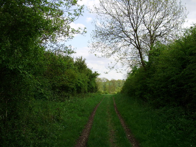 Trackway to fields