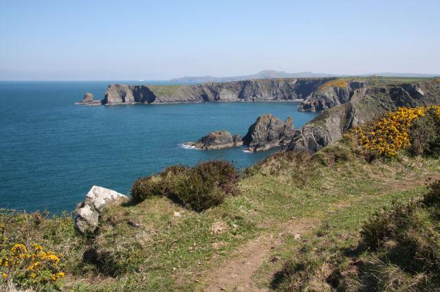 Coastal path above Pwll Olfa