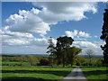SO4565 : Leaving Croft Castle by Ian Paterson
