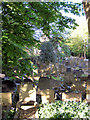 SD7312 : St Maxentius Graveyard by David Dixon