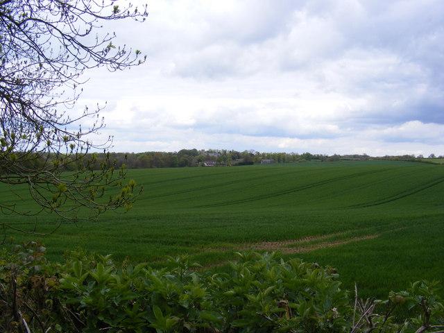 Fields off Clay Hills