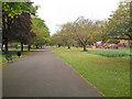 SJ8597 : Ardwick Green Gardens by David Dixon