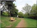 SO9875 : Beacon Hill triangulation pillar by Jonathan Barber