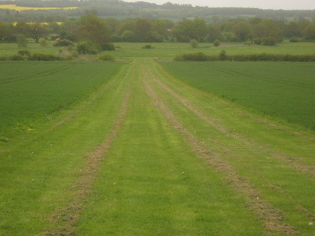East Haxted Farm Grass Taxi Way