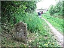 SJ8764 : Stone milepost on Macclesfield Canal by Raymond Knapman
