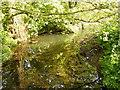 TM3266 : River Alde at Church Road Bridge by Geographer
