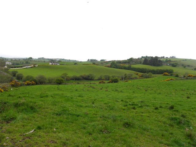 Ballymacilroy Townland