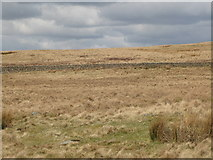 NY5775 : Panorama from the cairn north of Borderrigg (1: N - Grey Hill) by Mike Quinn