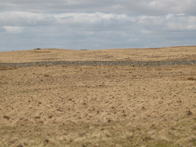 Panorama from the cairn north of Borderrigg (3: NW - Grey Hill)