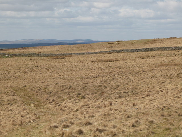 Panorama from the cairn north of Borderrigg (4: WNW - The Pike)