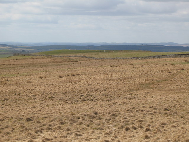 Panorama from the cairn north of Borderrigg (5: WNWb - The Pike)