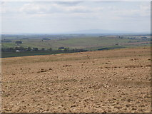 NY5775 : Panorama from the cairn north of Borderrigg (6: W - Crossgreens) by Mike Quinn