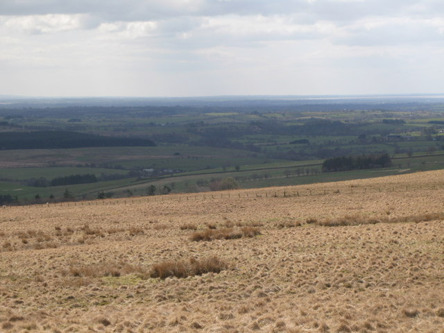 Panorama from the cairn north of Borderrigg (7: WSW)