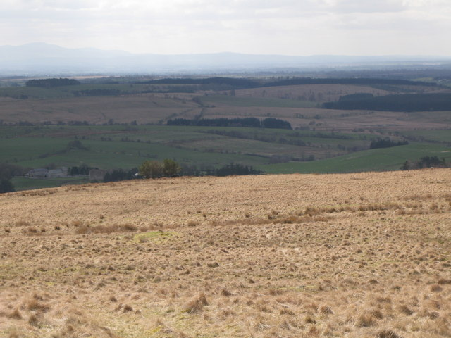 Panorama from the cairn north of Borderrigg (8: SW - Borderrigg)