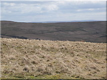 NY5775 : Panorama from the cairn north of Borderrigg (12: SE) by Mike Quinn