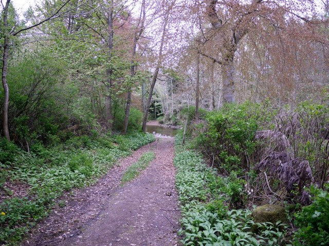Track to the ford east of Harbottle village