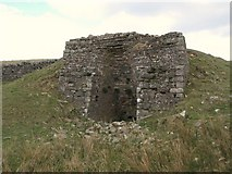 NY5675 : Lime kiln below The Pike (3) by Mike Quinn