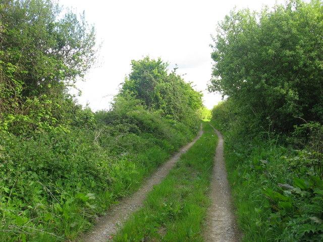 Lane at Balscaddan, Co. Dublin