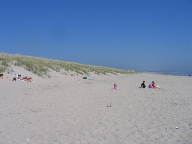 Curracloe dunes and beach along Wexford Bay