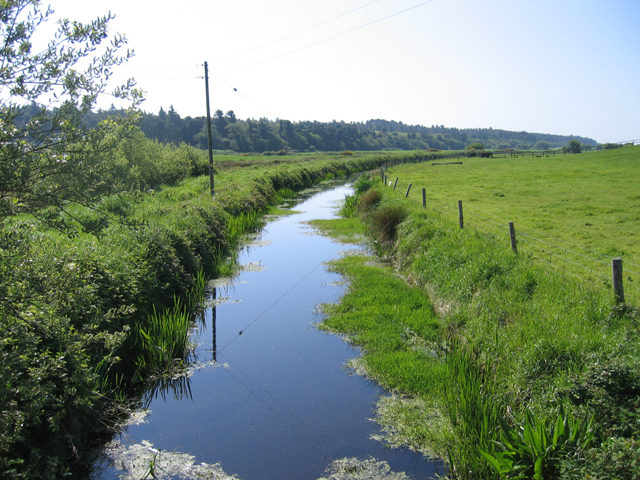 Watercourse south of Coolrainey, Co. Wexford