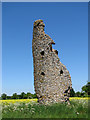 TM1679 : The ruined church of St Mary, Thorpe Parva by Evelyn Simak