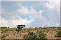 SE8791 : Bride Stone by Tony Kirwan