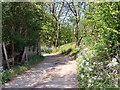 SD7005 : Track to Cutacre Farm by David Dixon