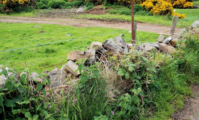 Drystone wall near Saintfield