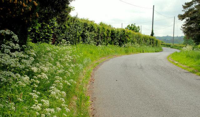 The Lisbane Road near Ballynahinch