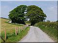 SN5458 : Minor road heading north past Waunfergi by Nigel Brown