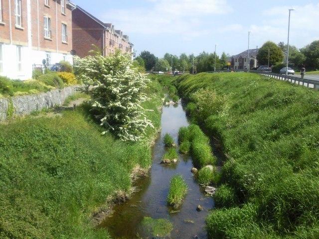 Broadmeadow River, Co Meath