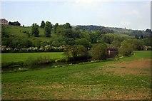 ST7065 : The River Avon near Kelston Park by Steve Daniels