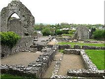 SN1645 : Ruins of St. Dogmaels Abbey,  Pembrokeshire by Derek Voller