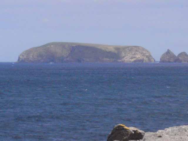 Kid Island