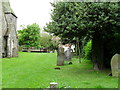 TQ4361 : St Mary, Downe- churchyard (3) by Basher Eyre