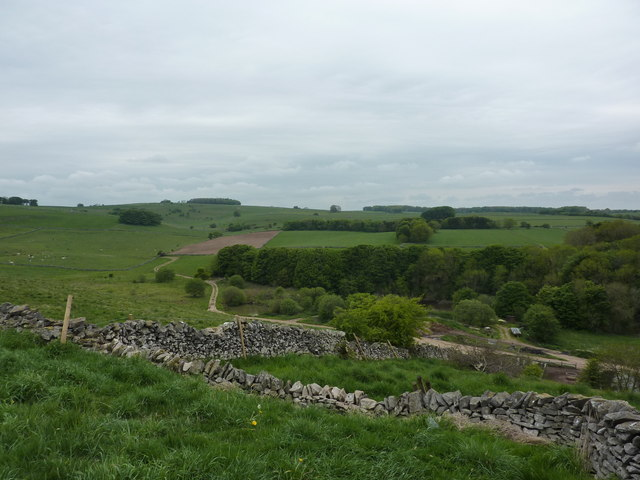 Dry stone walls, copse and lane