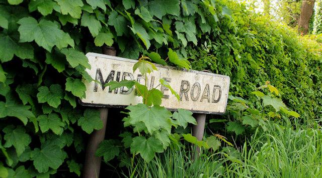 The Middle Road near Saintfield (2)