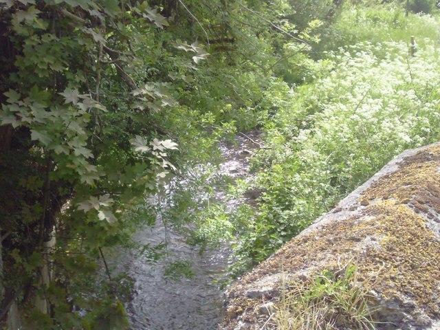 Boycetown River, Milltown, Co Meath