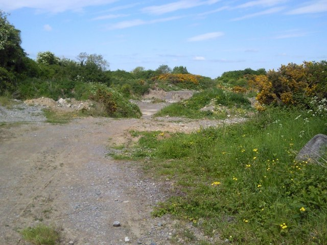 Disused Quarry, Co Meath