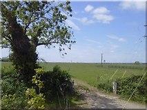 N8153 : Landscape, Co Meath by C O'Flanagan