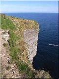 G0540 : Cliffs at Ceide Fields by Oliver Dixon
