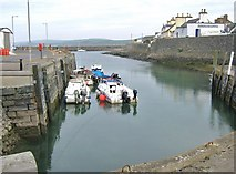 NX3343 : The inner part of the harbour, Port William by Ann Cook