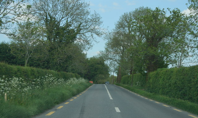 On the R408, County Kildare (2)