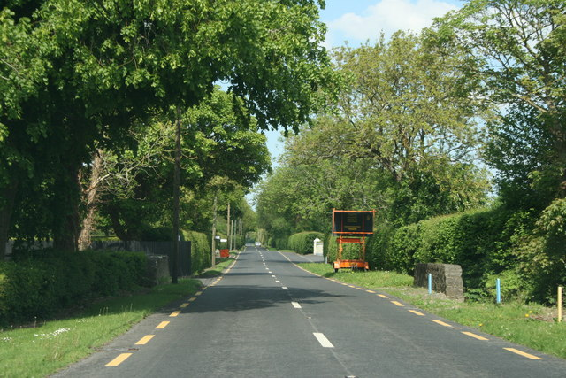 On the R408, County Kildare (3)