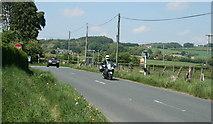 N9612 : Glashina, County Wicklow by Sarah777