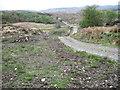NM6667 : Track from Acharacle near Allt na Mathair by Chris Wimbush