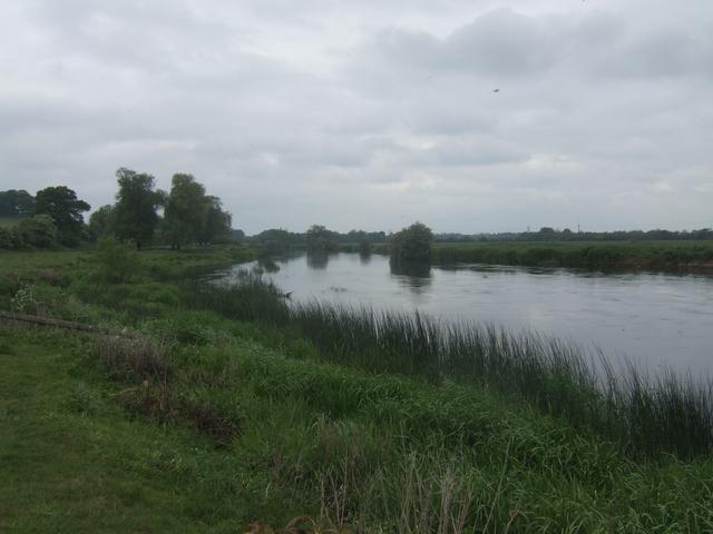 River Trent - Upstream at Newton Solney